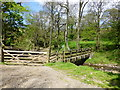 SD6346 : Footbridge near Lickhurst Farm by Raymond Knapman