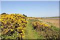 SH4068 : The Anglesey Coastal Path at Malltraeth by Jeff Buck