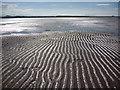 NT6678 : Coastal East Lothian : Belhaven Sands : Week 21