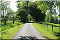 NS2400 : Road to the Pond, Bargany Estate by Billy McCrorie