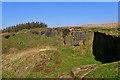 SE1242 : Old quarry, Harthill Cock by Mick Garratt