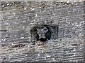 SW9172 : Bull's head, Church of St Petroc Minor, Little Petherick by Derek Harper