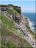 SY6970 : Cliffs on Portland near Southwell by Gareth James
