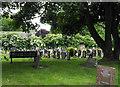 NZ2949 : Gravestones at Christ Church by Trevor Littlewood