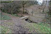 SX4861 : Footbridge, Porsham Wood by N Chadwick