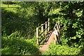 SX8965 : Bridge to Kitson Park by Derek Harper
