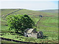 NY8646 : Ruined barn in the Byerhope valley (2) by Mike Quinn