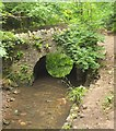 ST5578 : Footbridge over Hazel Brook by Derek Harper