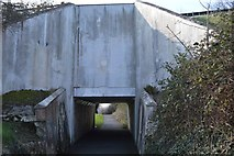 SX5158 : Underpass, Leigham by N Chadwick