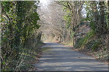 SX5058 : Footpath through Estover by N Chadwick