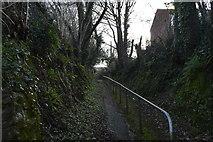 SX5058 : Footpath, Eggbuckland by N Chadwick