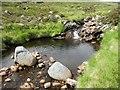 NN4798 : Pair of boulders in Allt Luaidhe above Speyside : Week 28