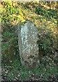 SX0875 : Guidepost, Wenfordbridge by Derek Harper