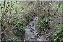 SX4957 : Small stream, Eggbuckland by N Chadwick