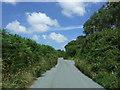 SW7128 : Lane near Napheane Farm by JThomas