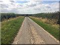TF2098 : Minor road towards Thorganby by Steve  Fareham