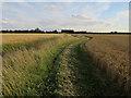 TL4665 : Permissive footpath to Rectory Farm Barns by Hugh Venables