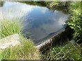 SD9518 : Weir on Solomon Cutting,, Chelburn Moor by Humphrey Bolton