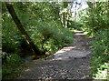 ST6363 : Barely a bridge by Neil Owen