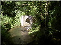 ST6364 : Old packhorse bridge by Neil Owen