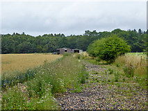 SU9396 : Disused farm buildings off Cherry Lane by Robin Webster