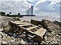 TA1128 : Humber Estuary : Week 31