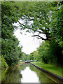 SJ6049 : Llangollen Canal north of Wrenbury Heath in Cheshire by Roger  Kidd