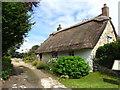 SE6584 : Thatched cottage, Beadlam : Week 32