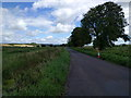 ST3537 : Lane across the flat landscape by Rob Purvis