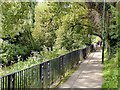 SJ9222 : Riverside walk by Alan Murray-Rust