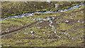 NH5382 : Barrier across the hill track below Garbhan Mòr by Julian Paren