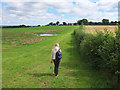 SJ5673 : Path from Beech Lane to Town Farm Lane by Gary Rogers