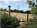 SJ5674 : Footpath to Beech Lane Southwest of Big Wood by Gary Rogers