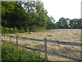 TQ4257 : View from access road to Leacroft Kennels by Marathon
