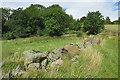 NJ5701 : Boulder Dyke by Anne Burgess