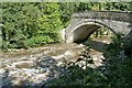 SE0188 : Yore Bridge at Aysgarth with the River Ure in spate by Alan Murray-Rust
