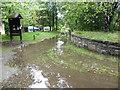 NJ2945 : The Speyside Way near Craigellachie by Dave Kelly