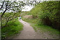 SX2351 : South West Coast Path by N Chadwick