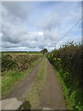 SX5594 : Bridleway to Southcott Cross from Yelland (1) by David Smith