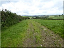 SX5594 : Bridleway to Southcott Cross from Yelland (2) by David Smith