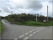 SX5494 : Road fork at Southcott Cross by David Smith