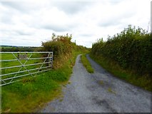 SX5599 : Track to Lower Northwood farm by David Smith