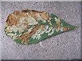 TL0452 : Horse Chestnut leaf by M J Richardson