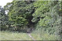 SU8695 : Gate in corner of field by N Chadwick