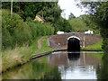 SO8798 : Wightwick Lock and Lock Bridge, Wolverhampton by Roger  Kidd