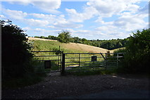 SU8596 : Gate to Oaks Wood by N Chadwick