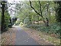 TG2410 : Pathway between Mousehold Avenue and Gilman Road by Adrian S Pye