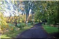 NO3322 : Driveway to Birkhill by Alan Reid