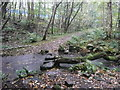 SE0324 : Stepping stones on Sowerby bridge FP67, Luddendenfoot by Humphrey Bolton
