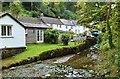 SW7525 : Houses on the Eastern side of the stream that feed into Helford Cteek, Helford village, Cornwall by Derek Voller